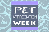 Pet Appreciation Week Promos at FlexOffers.com