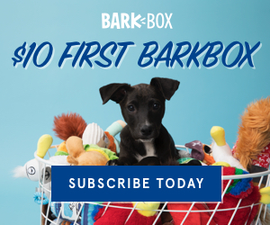 Pawsome National Puppy Day Markdowns