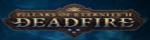 FlexOffers.com, affiliate, marketing, sales, promotional, discount, savings, deals, bargain, banner, blog, pillars of eternity II: deadfire affiliate program