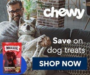 National Dog Day Bargains